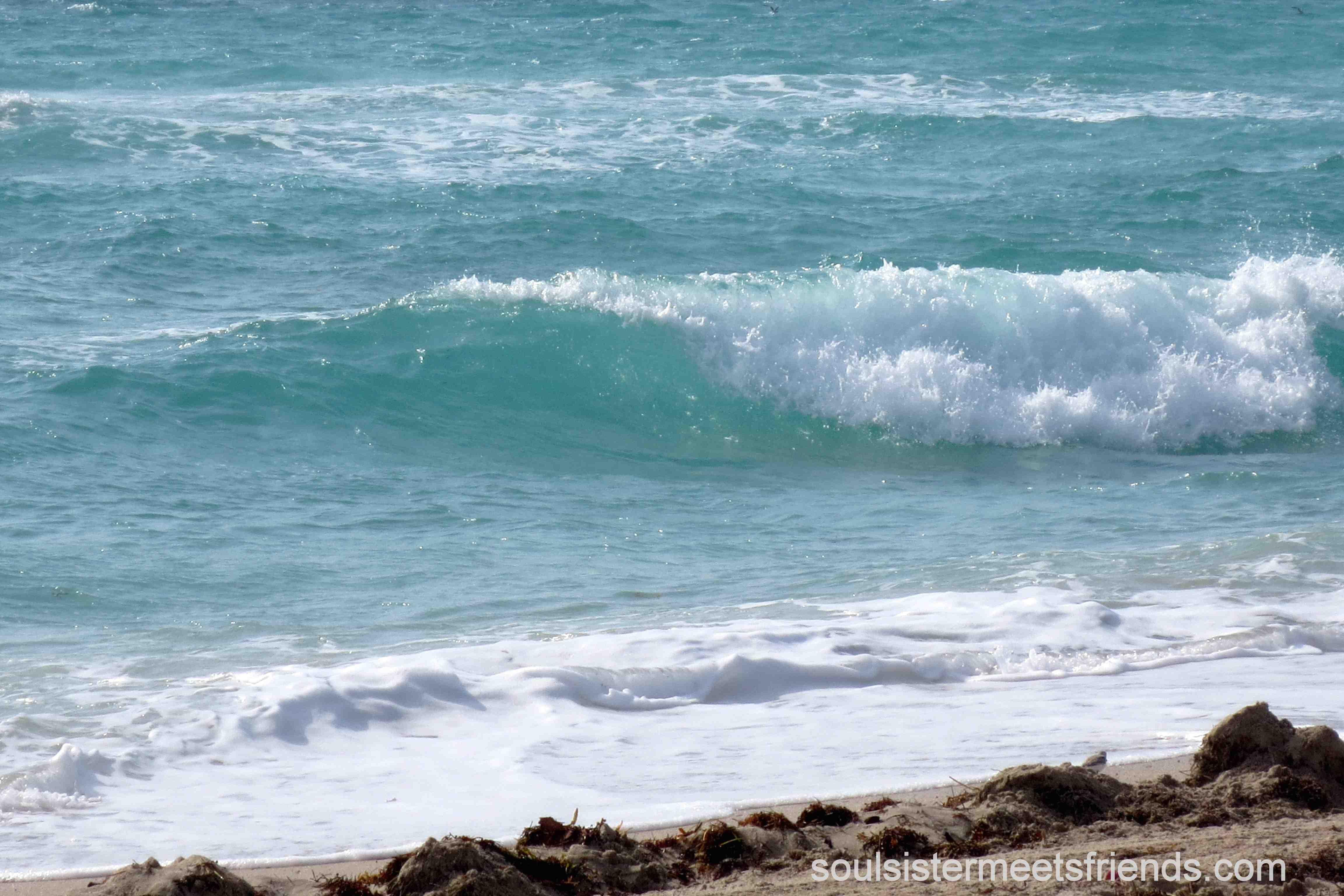 Die perfekte Welle: am Miami Beach USA