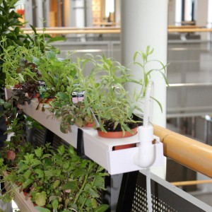 Urban Farming: Decoplant