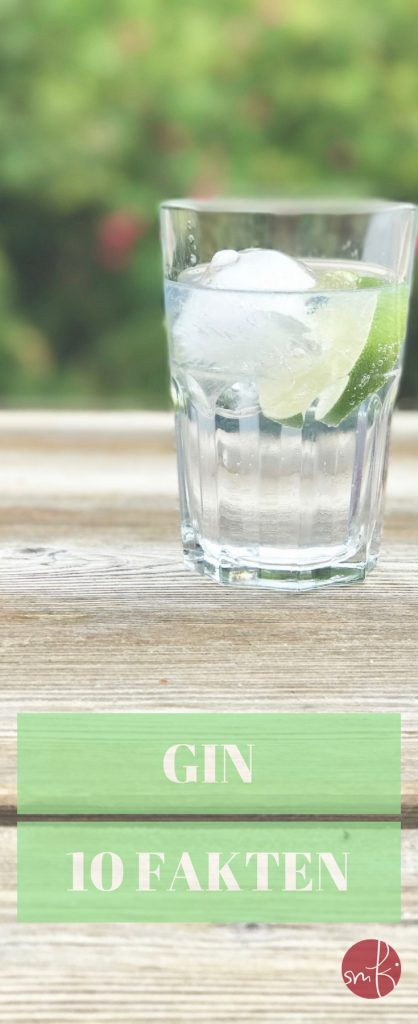 10 Fakten zum Gin: ein Barkeeper erzählt!