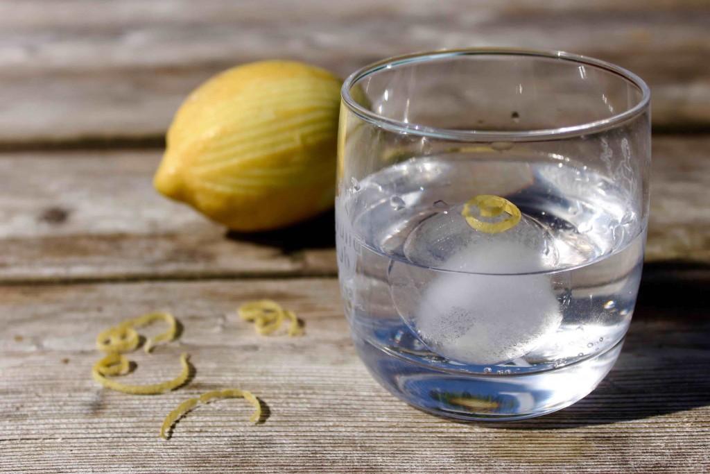 10 Fakten über Gin