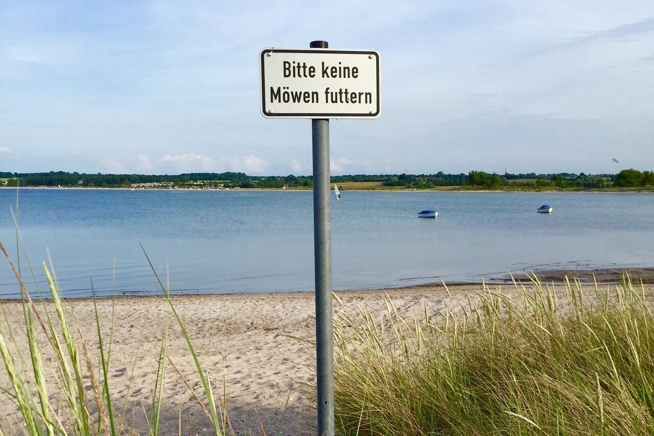 Möwen-Strand-Ostsee-soulsistermeetsfriends