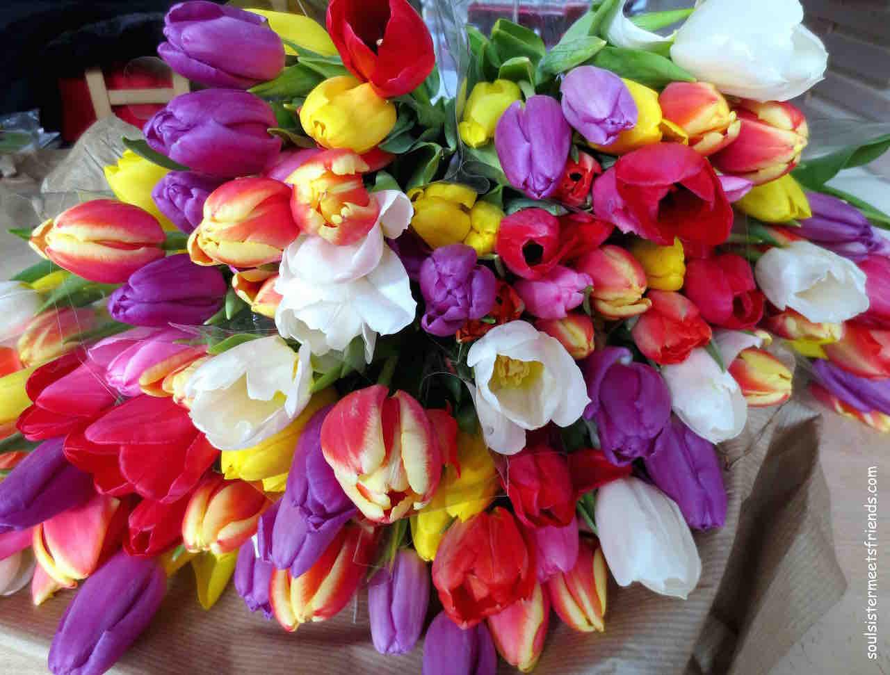 #sonntagsglück-blogparade-Tulpen
