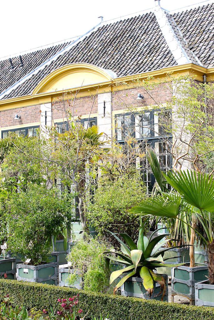 Die Orangerie des Botanischen Gartens: hier überwintern die südländischen Pflanzen