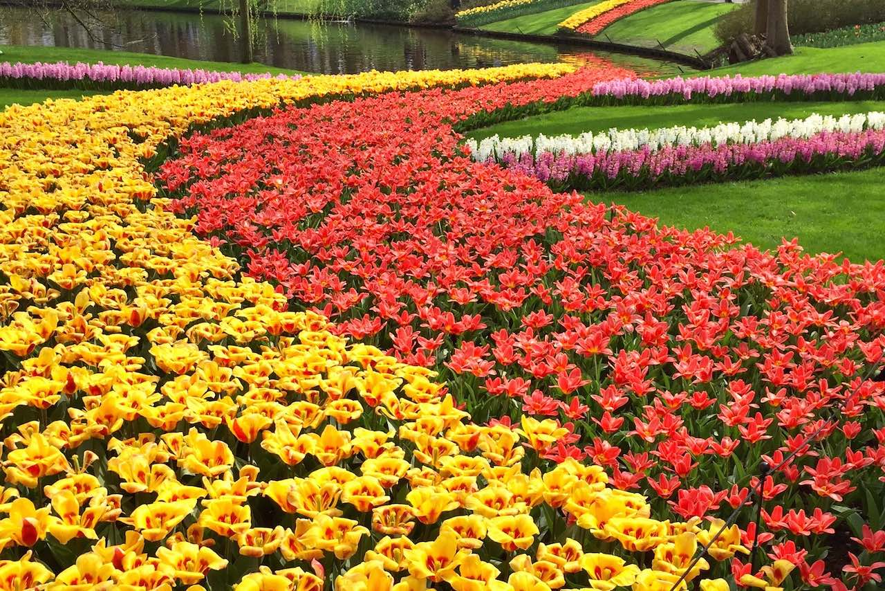 Keukenhof-Holland-Tulpen-soulsistermeetsfriends