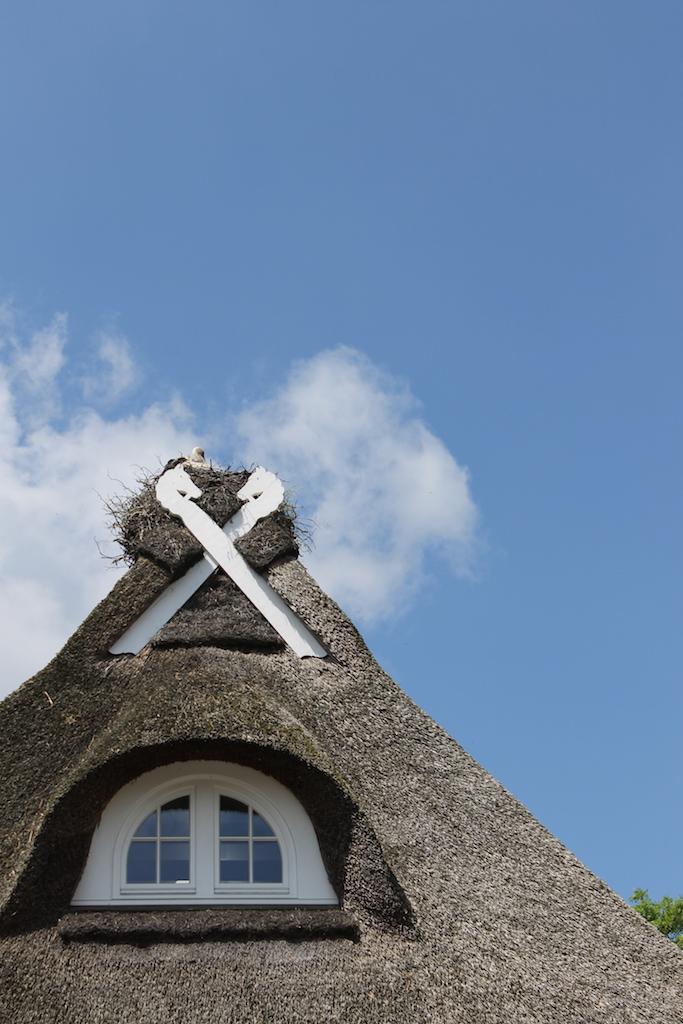 sonntagsglück-Blogparade-Storchennest-auf-Reetdach