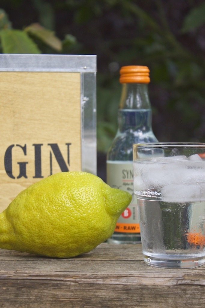 Gin_Tonic_Lemon_Drink_summer_soulsistermeetsfriends_NEU
