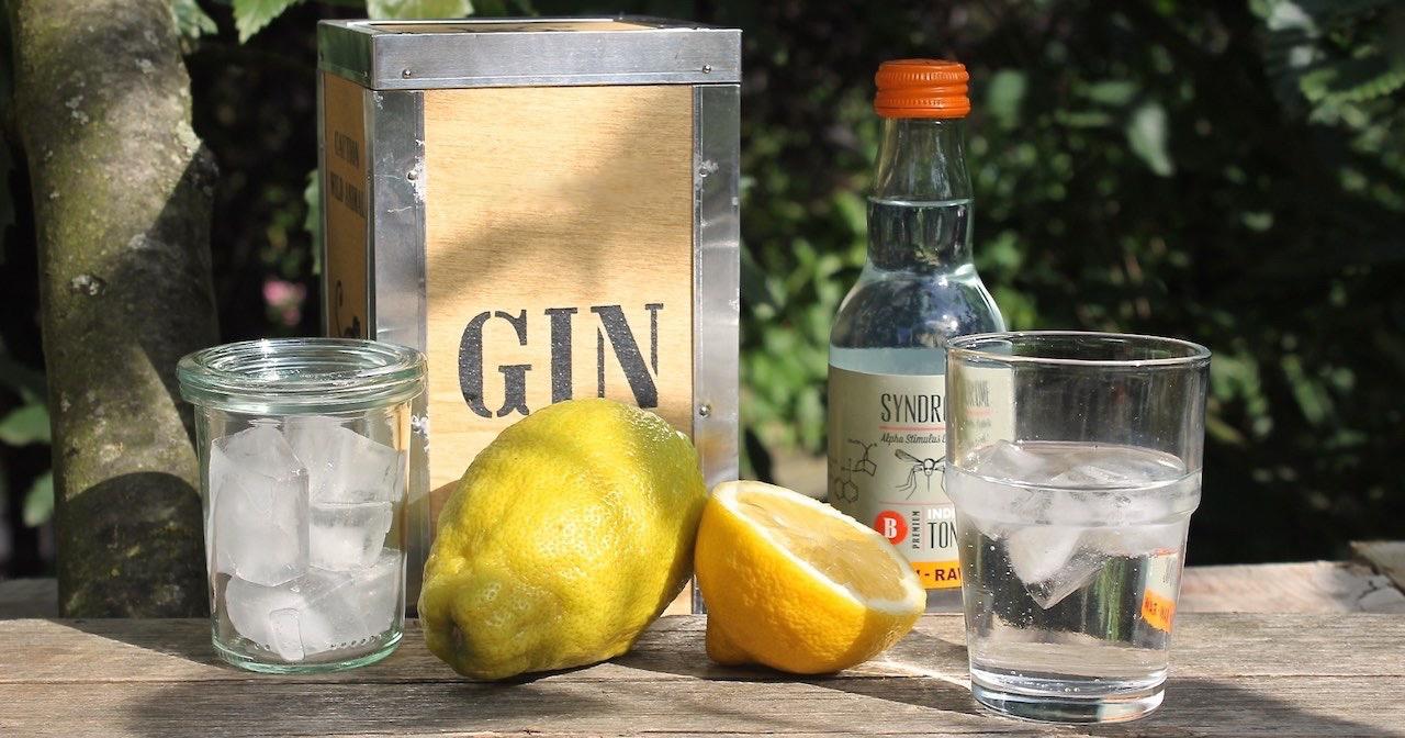 Gin_Tonic_mit_Lemon_cocktail-mit-tonic-soulsistermeesfriends_NEU