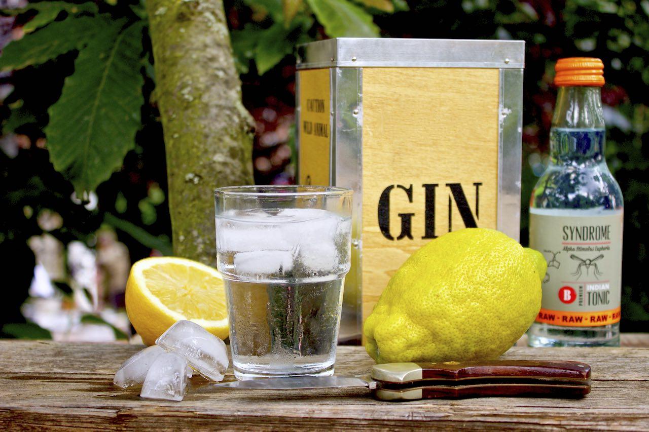 Gin_Tonic_mit_lemon_sommer_drink_soulsistermeetsfriends_NEU