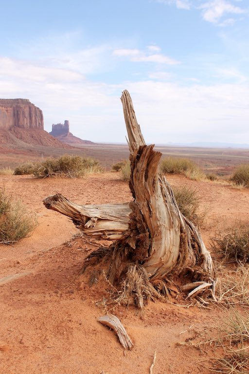 roadtrip_westcoast_usa_monument_valley_soulsistermeetsfriends_desert_woods