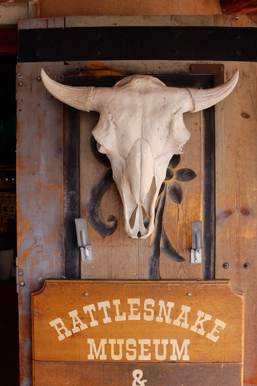 roadtrip_westcoast_usa_albuquerque_new_mexico_rattlesnake_museum__soulsistermeetsfriends
