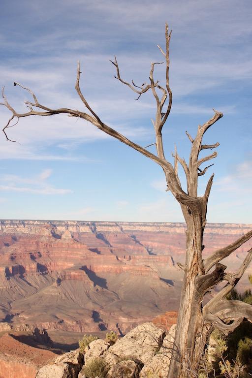 grand_canyon_south_rim_usa_roadtrip_westcoast_soulsistermeetsfriends