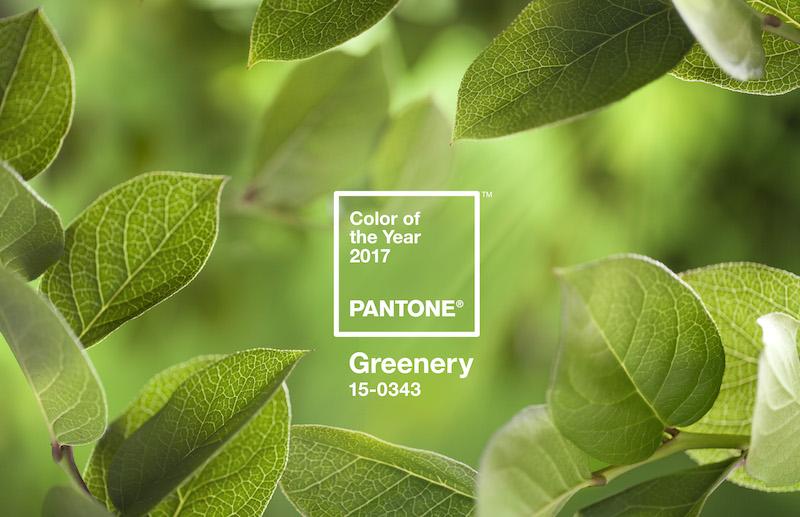 Die Trendfarbe 2017: Pantone Greenery