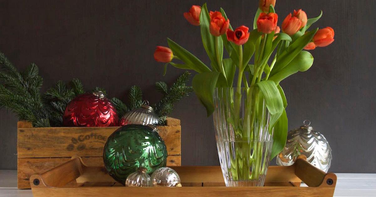 geschenkidee mit familientradition tulpen zu weihnachten. Black Bedroom Furniture Sets. Home Design Ideas