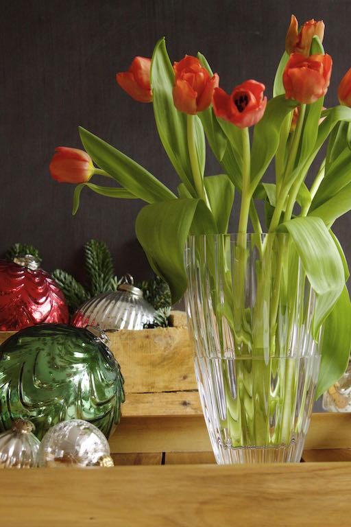 Meine Familientradition: Tulpen zu Weihnachten