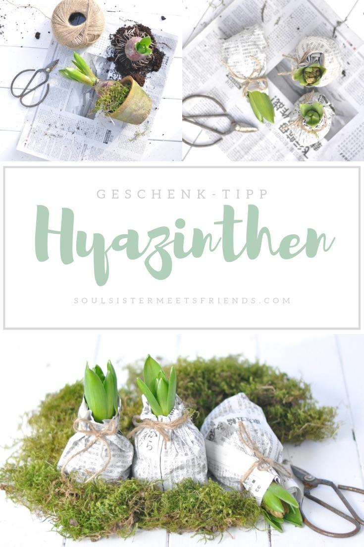 Hyazinthen hübsch verpackt verschenken – endlich Frühling!
