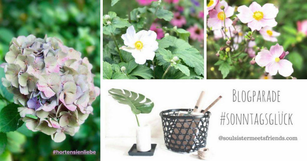 Blogparade #sonntagsglück: Netzwerken für Blogger auf soulsistermeetsfriends