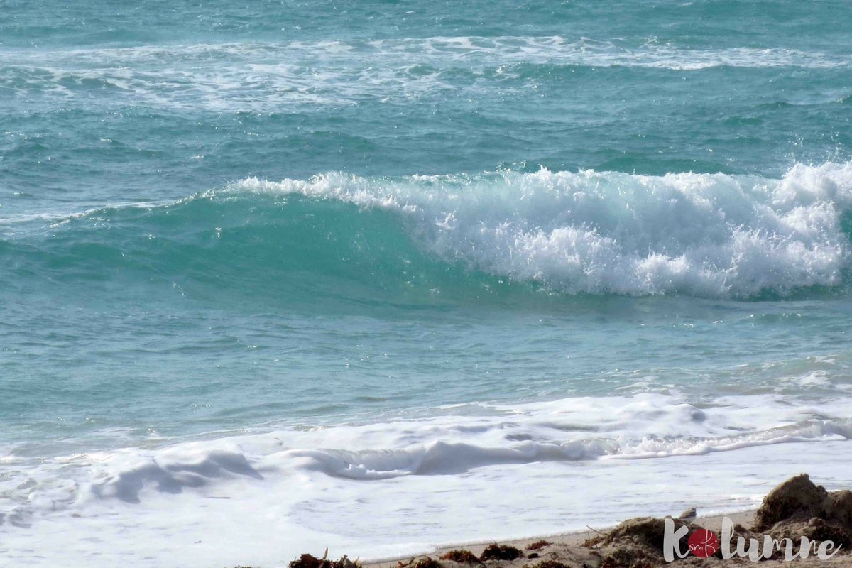 Kolume: Endlich Ferien oder das große Chillen / soulsistermeetsfreinds
