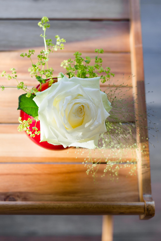 #Blumendeko: kleine Vasen, großer Wow-Effekt