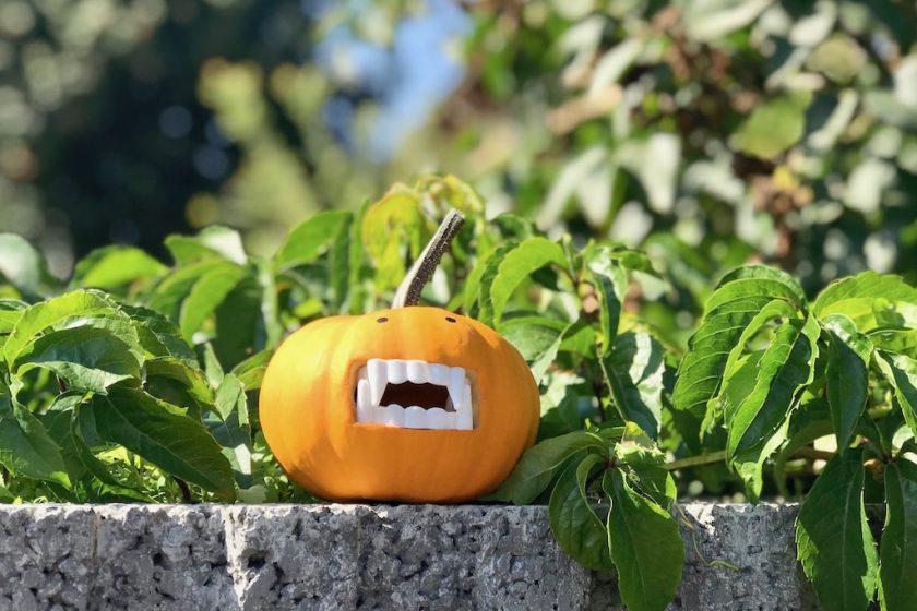 Happy #Halloween: kleiner Vampir - #Kürbis