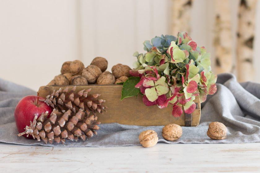 Herbstliche Deko mit Nüssen, Tannenzapfen und Hortensien