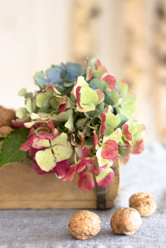 Herbstliche Blumendeko mit Hortensien