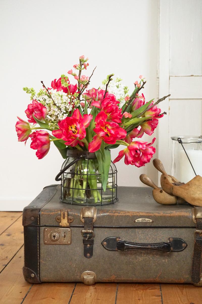 Frühblüher: Tulpen holen den Frühling ins Haus!