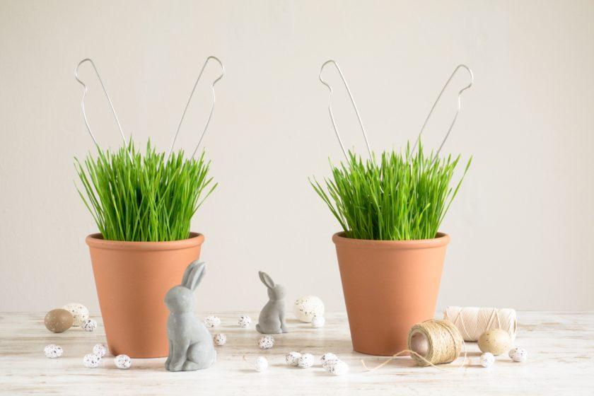 Niedlicher Lifehack zu Ostern: Hasenohren aus Drahtbügeln