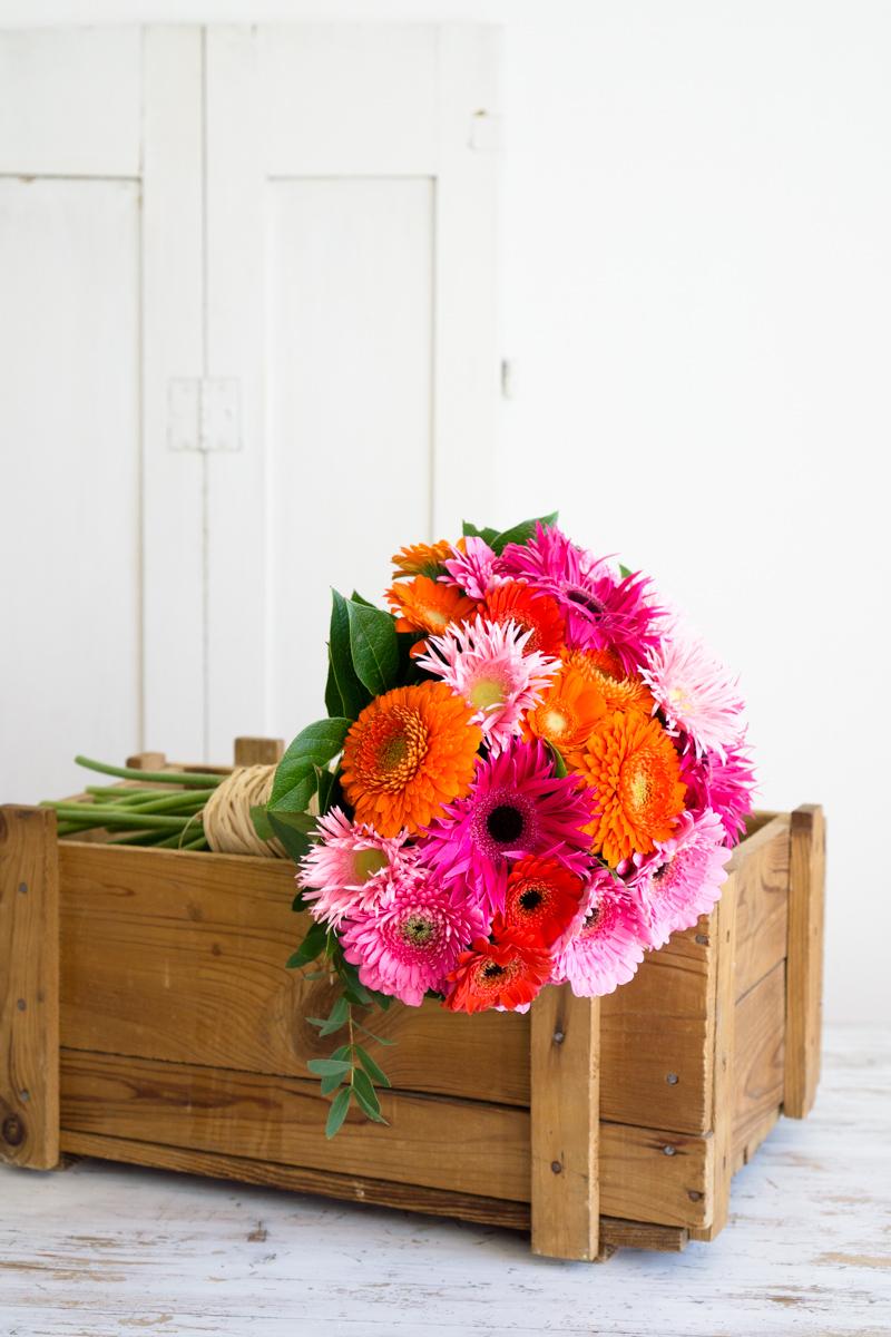Blumendeko: Gerbera für gute Laune