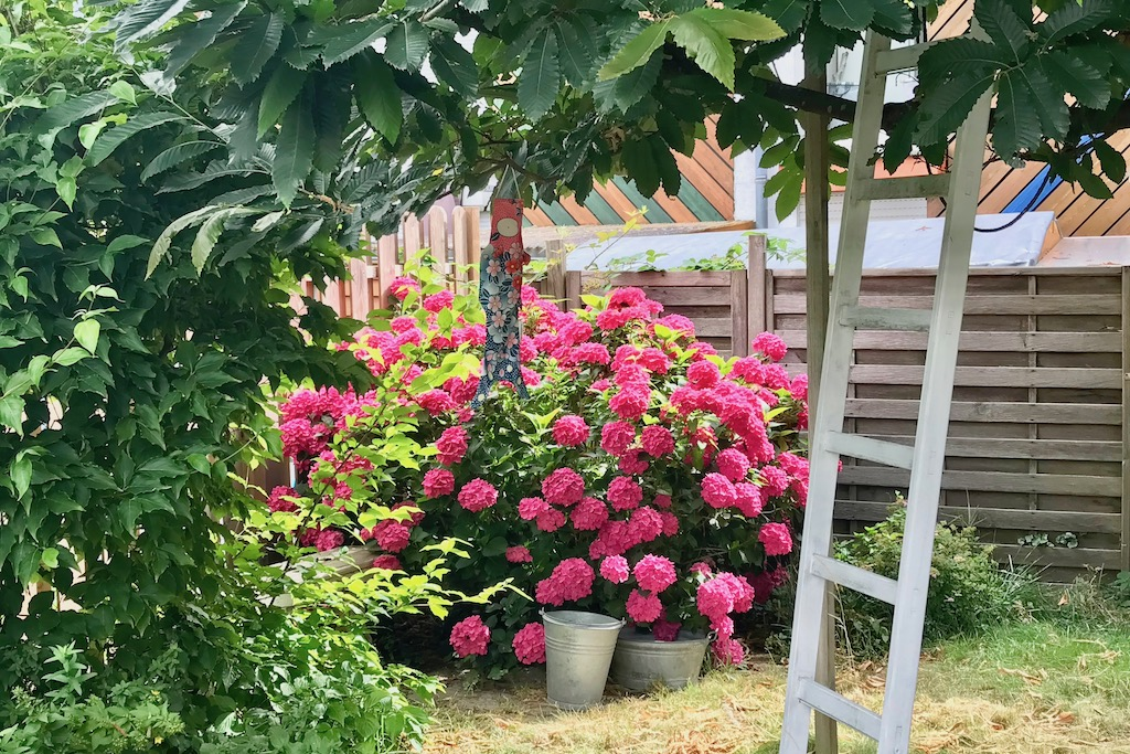 Blogparade #sonntagsglück: Gartenglück im Sommer