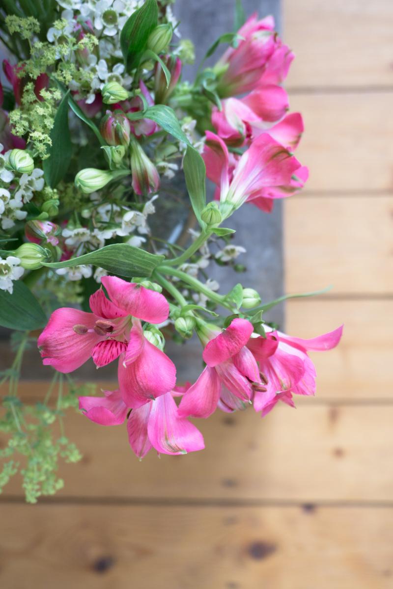 Low Budget Blumen-Deko: mit zarten Blüten in sanften Rot-Tönen
