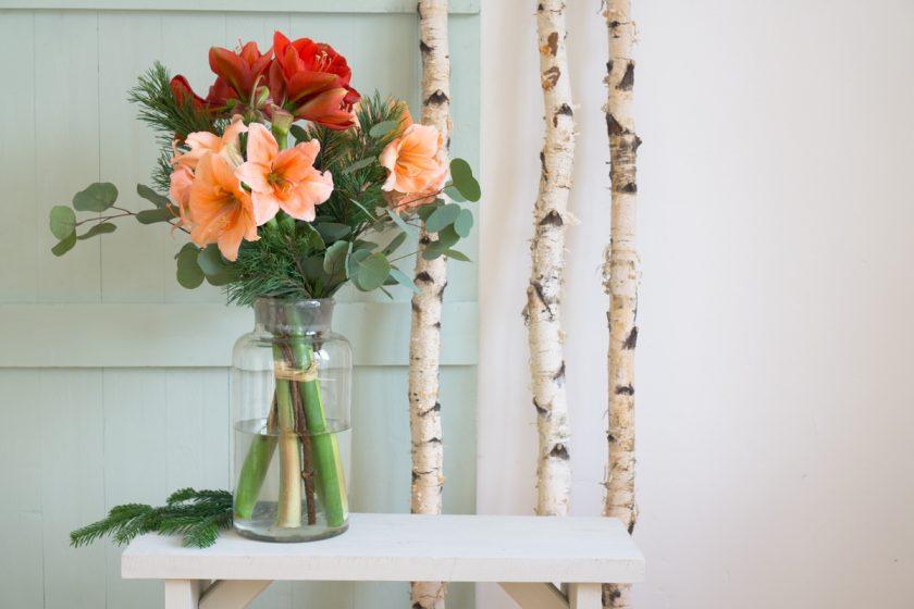 Blumendeko im Winter mit Amaryllis