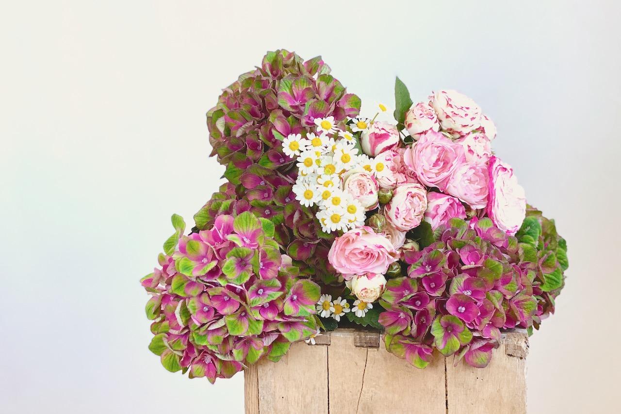 Netzwerken für Blogger beim sonntagsglück: Blumen vom Markt