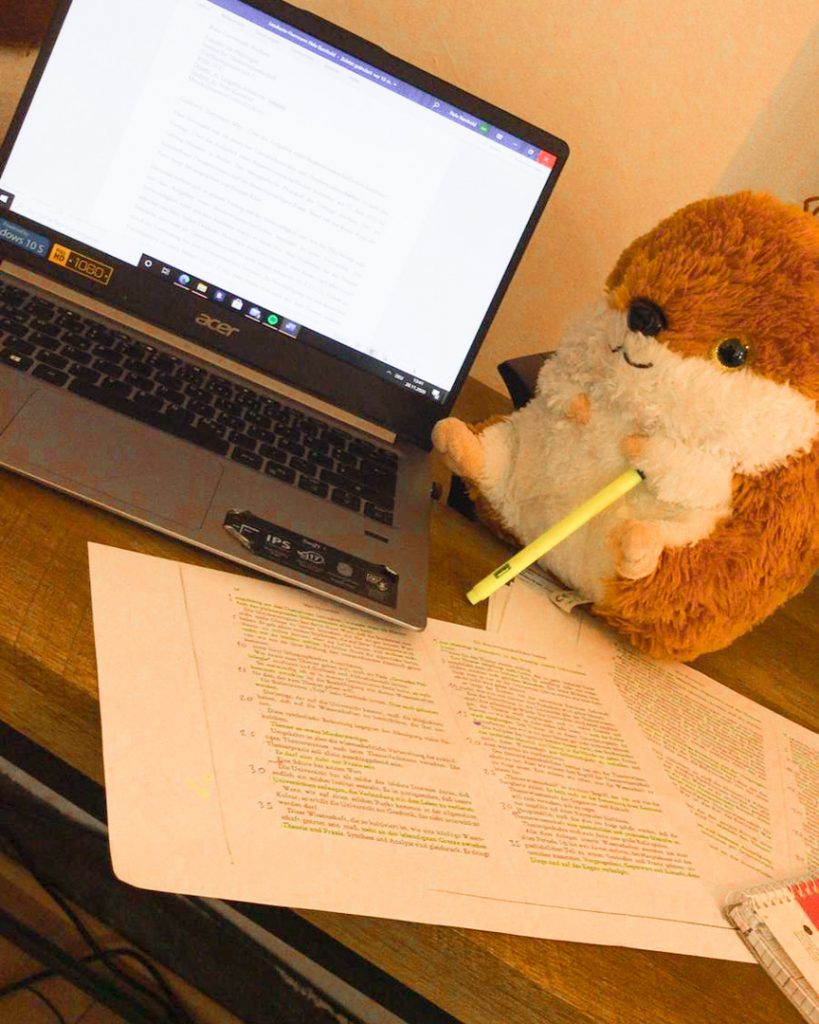 Interview – 5 Fragen an Nele Rembold: Studieren in Zeiten von Corona