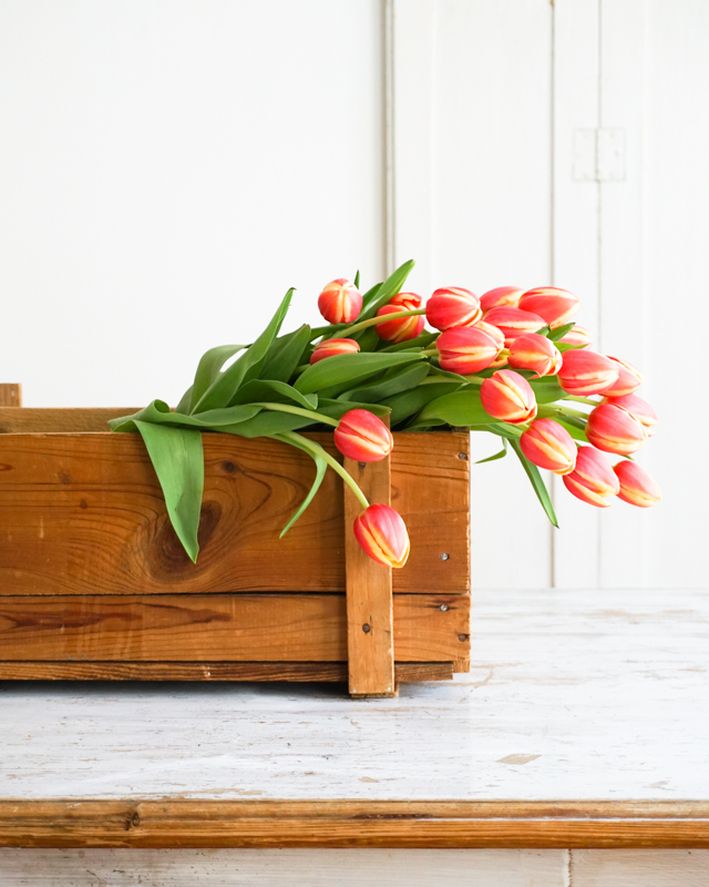 Hygge Home: Tulpen in der Holzkiste
