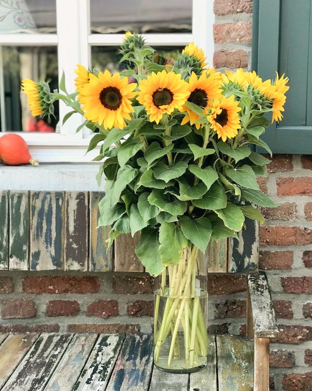 Blumenstrauß ourdoor Sonnenblumen